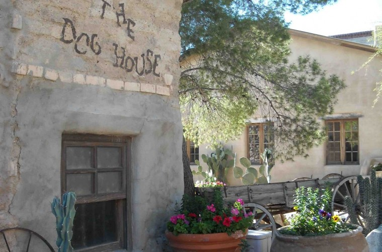 Tanque Verde Dog House