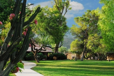 Front Lawn Tanque Verde Ranch