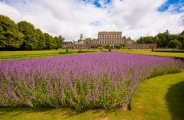 Grounds of the Cliveden House. Photo courtesy J Public Relations