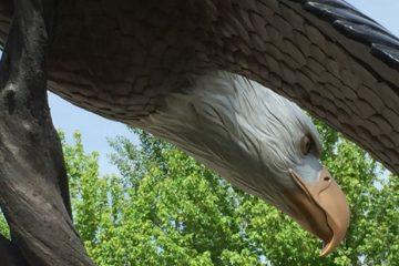 Joseph Oregon Bronze Eagle