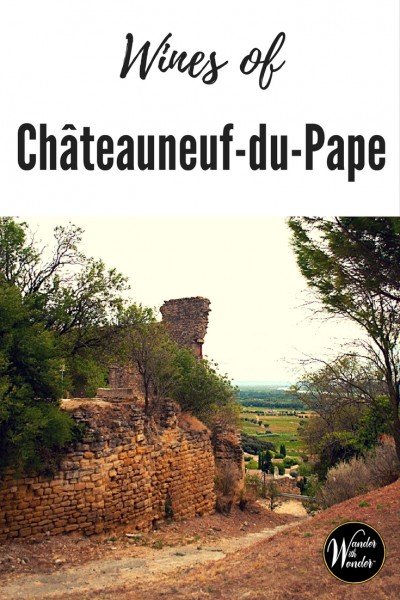 We drove through a landscape covered in vineyards to the ruins of the château. Châteauneuf-du-Pape in France is the holy grail of red wine regions.