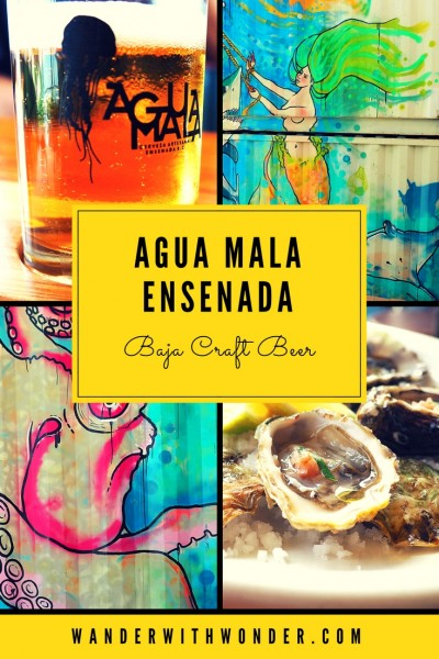 Agua Mala Cervecería Artesanal, one of Ensenada's thriving new microbreweries, is producing exciting Baja beers incorporating the flavors of Mexico.