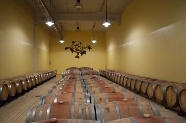 Barrel Room at Santa Lucia - Maremma