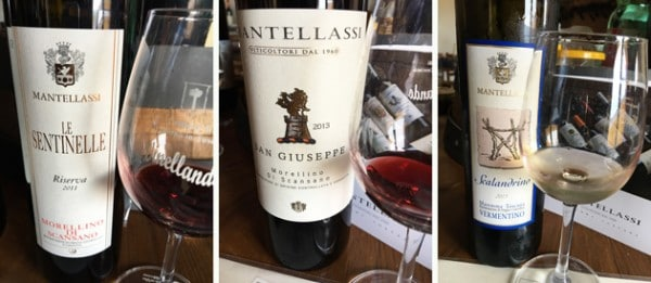 The Wines of Mantellassi - Maremma