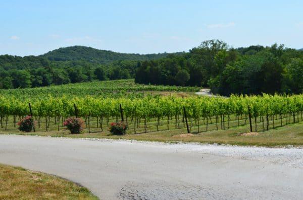 Chaumette Vineyards & Winery