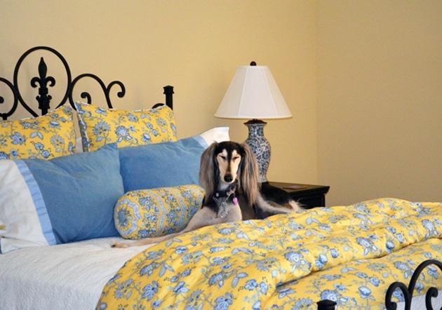 Chaumette Villa Loft Bedroom with Zoe