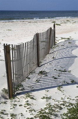 Spend summer vacation at St George Island Florida