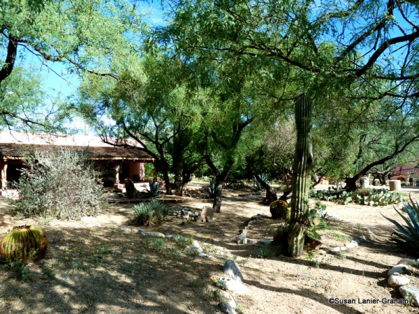 Tanque Verde Guest Ranch
