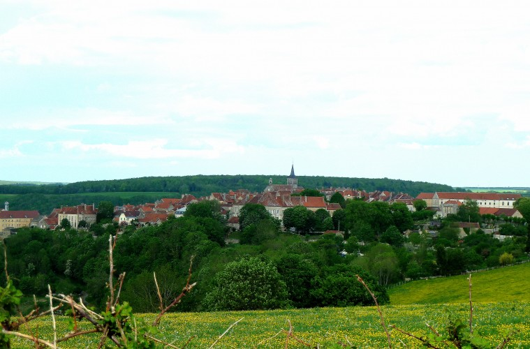 View of Flavigny sur Ozerain
