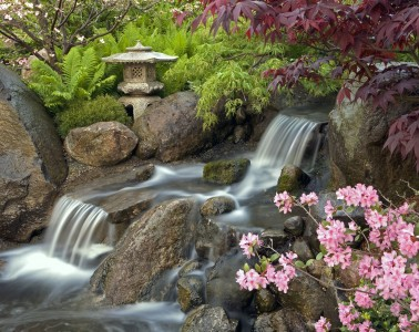 Anderson Japanese Gardens waterfall in spring