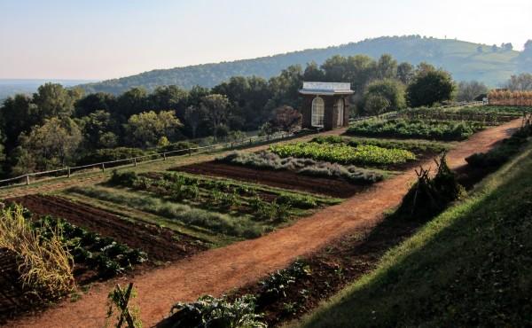 veggie garden Monticello by Josh