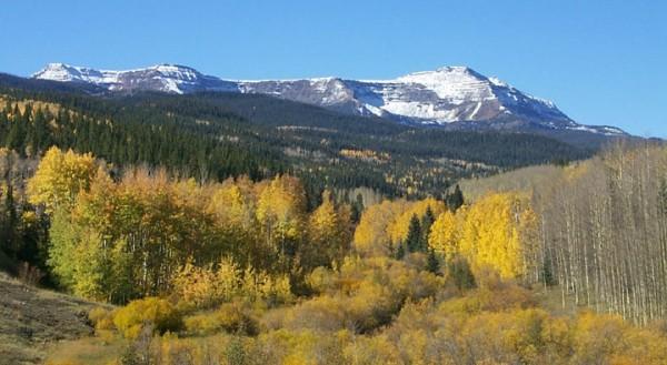 Flat Tops Wilderness Area by Lee Duerksen