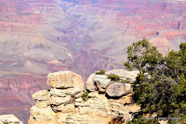 Grand Canyon by Susan Lanier-Graham