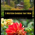 Botanical gardens across the Western US offer amazing opportunities for visitors to explore the world around them, experiencing everything from native plants to exotic foliage. These gardens vary from desert landscapes filled with cacti and succulents to hothouses brimming with exotic orchids to rugged seaside cliff walks. Here are five of our favorite gardens in the West. #gardens #botanicalgarden #Arizona #California #Colorado #familytravel