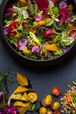 farmer's-salad-16-HR