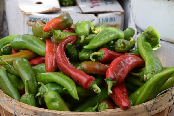 Red or Green Chiles? Photo by Susan Lanier-Graham