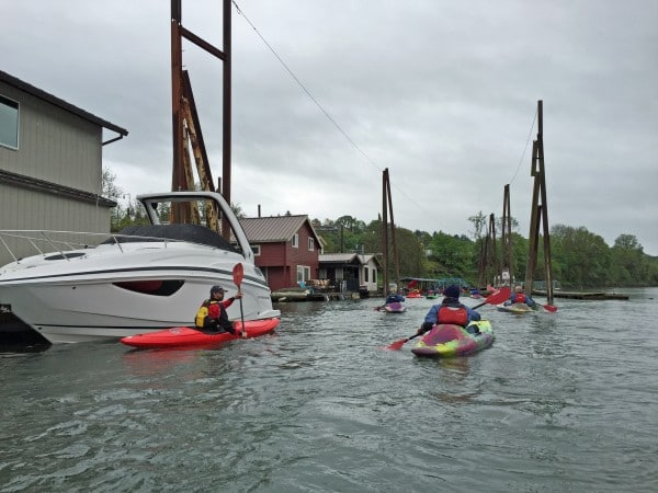 Willamette River Kayak Adventure