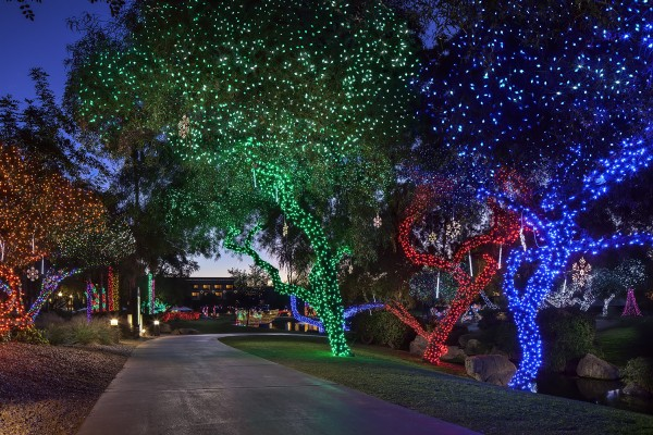fairmont-princess-christmas-lagoon_lights_tree_path