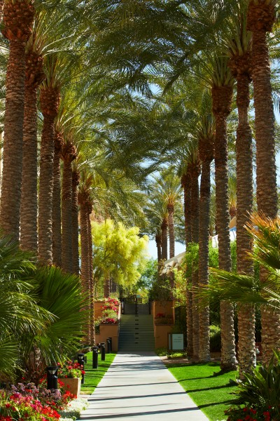There are paths through the desert or past towering palm trees where you can walk, jog and bike. Relax in the Lazy River any time of the year. Photo courtesy JW Marriott Phoenix Desert Ridge Resort & Spa