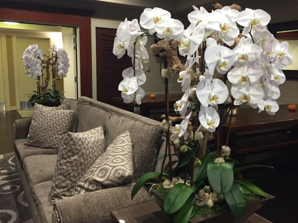 West Inn & Suites Carlsbad CA orchids