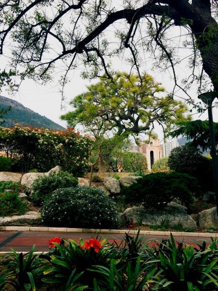 Princess Grace Rose Garden. Photo by Susan Lanier-Graham