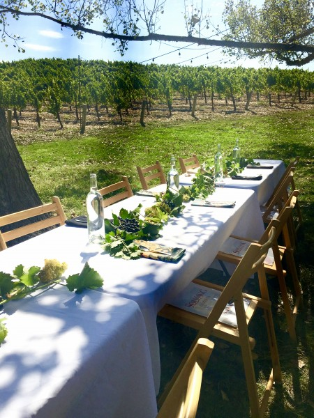 Wow moments in 2016. Lunch in the Vineyard at Buttonwood Farm Winery and Vineyard. Photo by Susan Lanier-Graham