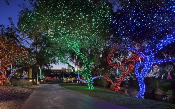 Stroll along the paths to see the magical lights. Photo courtesy Fairmont Scottsdale Princess