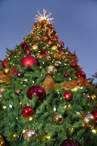 Tree lighting at the Omni Scottsdale Resort & Spa at Montelucia