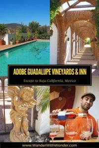 Escape to the Alluring Adobe Guadalupe Vineyards and Inn in Baja Mexico about 40 minutes from Ensenada for great food and wine.