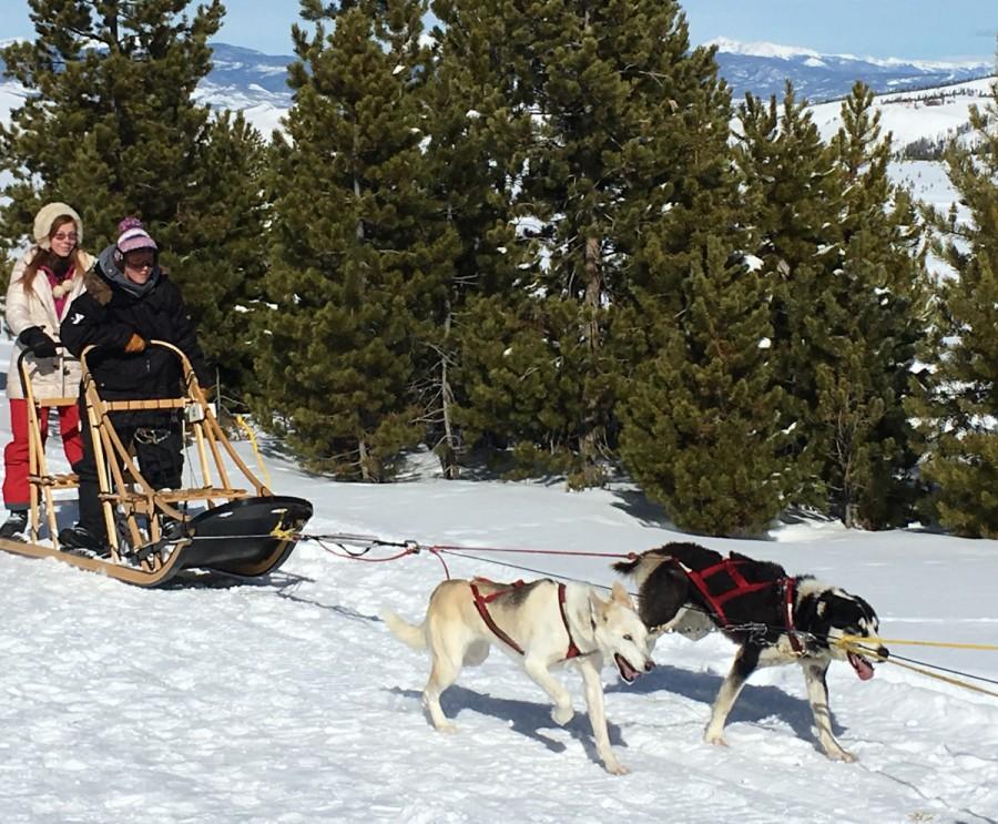 Snow Adventures in Grand County, Colorado