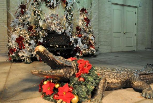 The Jefferson Alligator