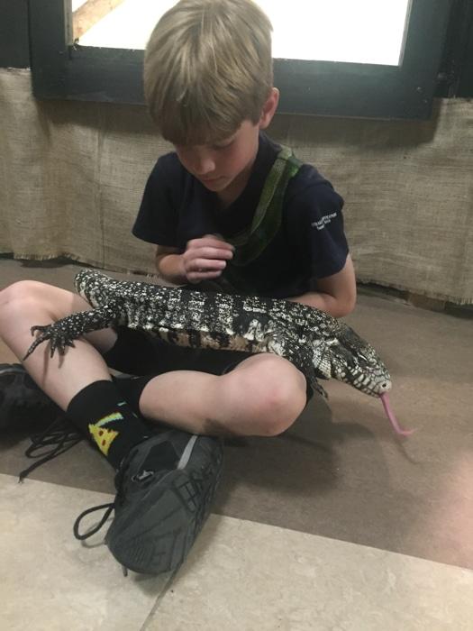 EcoVivarium Reptile Sanctuary
