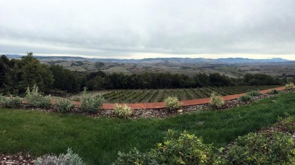 Spa Hotel Adler - Tenuta Sanoner -Winery View