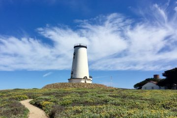 Along scenic California Highway One, Piedras Blancas light can be seen for 50 miles
