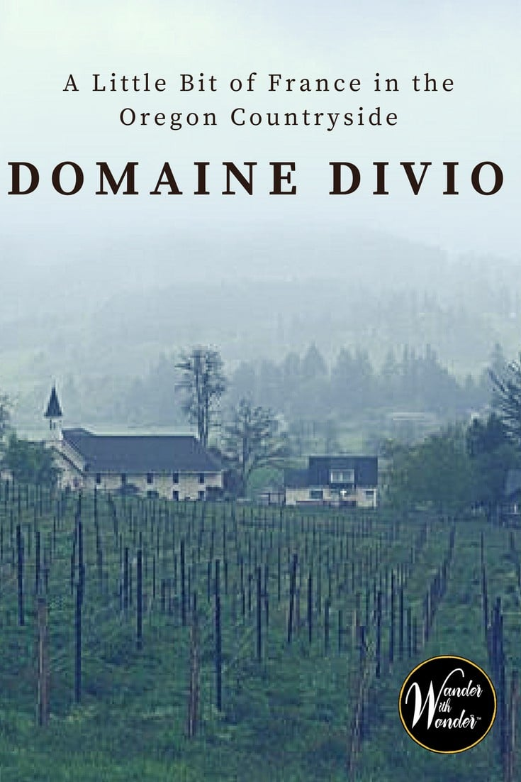 Escape to the picturesque Oregon Countryside and discover a little bit of France right here at home at the Domaine Divio Vineyards.