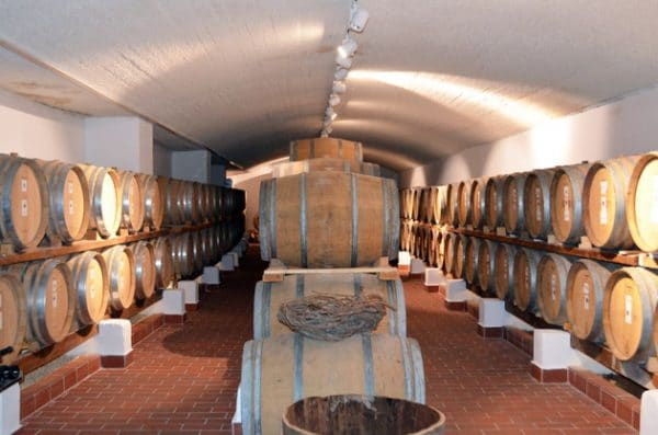 Santo Wines Barrel Room - Santorini Wineries