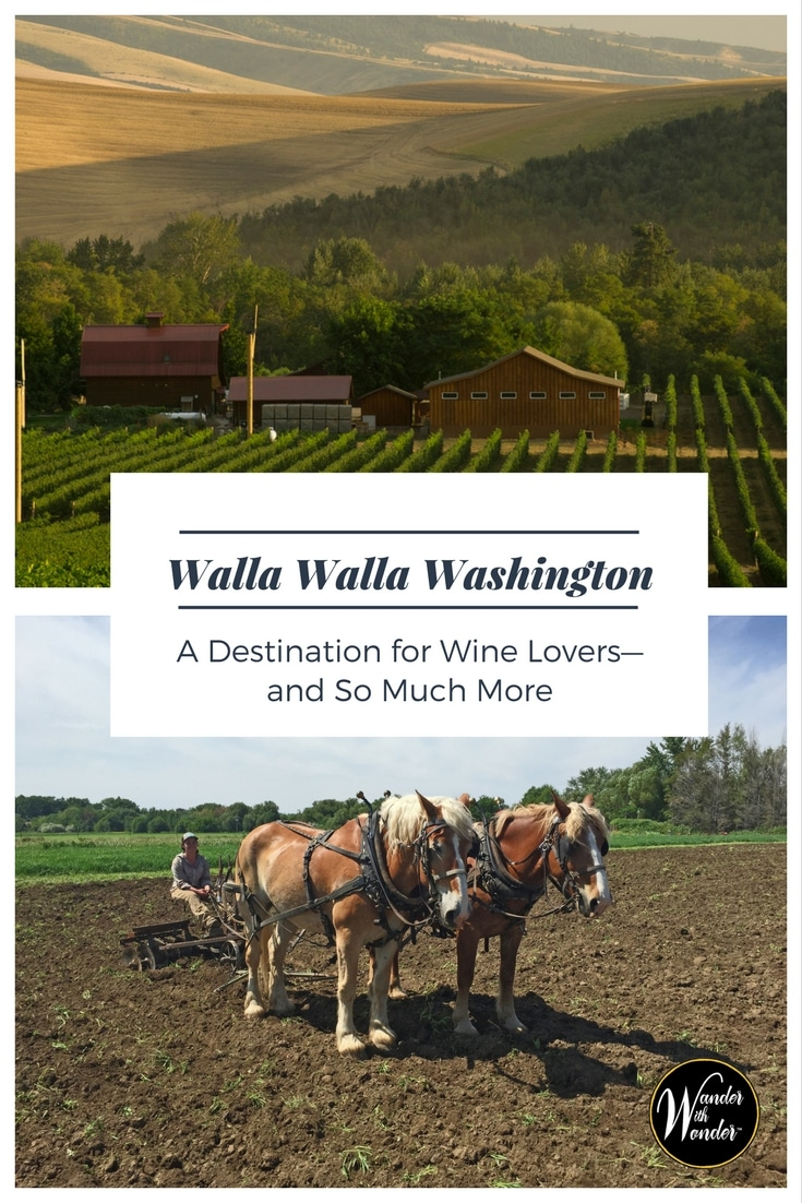 Walla Walla Washington has developed into an important destination for wine lovers. But a visit will show you there is much more to experience.