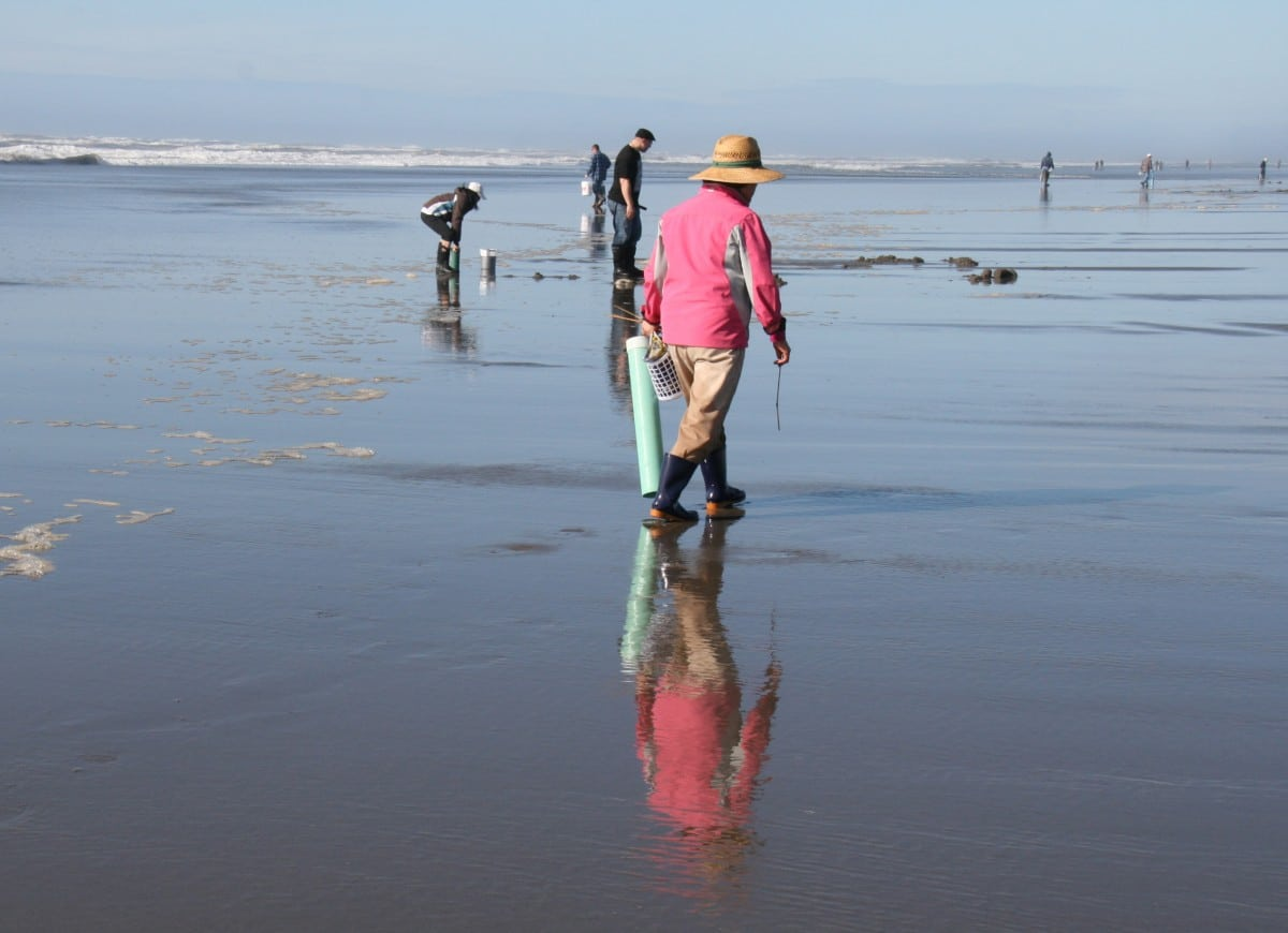 Razor Clamming Near The Depot Restaurant