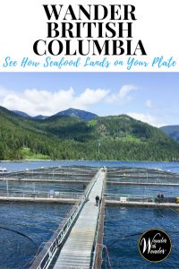 #Wander British Columbia where the finest quality sustainable #seafood in the world comes from Baynes Sound and the waters surrounding Vancouver Island. #travel #foodie #britishcolumbia #canada