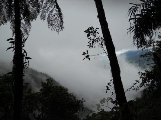 Andean Mountains peeking through the fog in Tapichalaca Reserve near Hostería Izhcayluma—a wellness retreat in Ecuador. Photo by Vickie Lillo