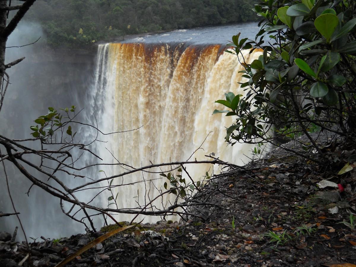 Eco-Lodge in Guyana: Adventure in the Amazon River Basin