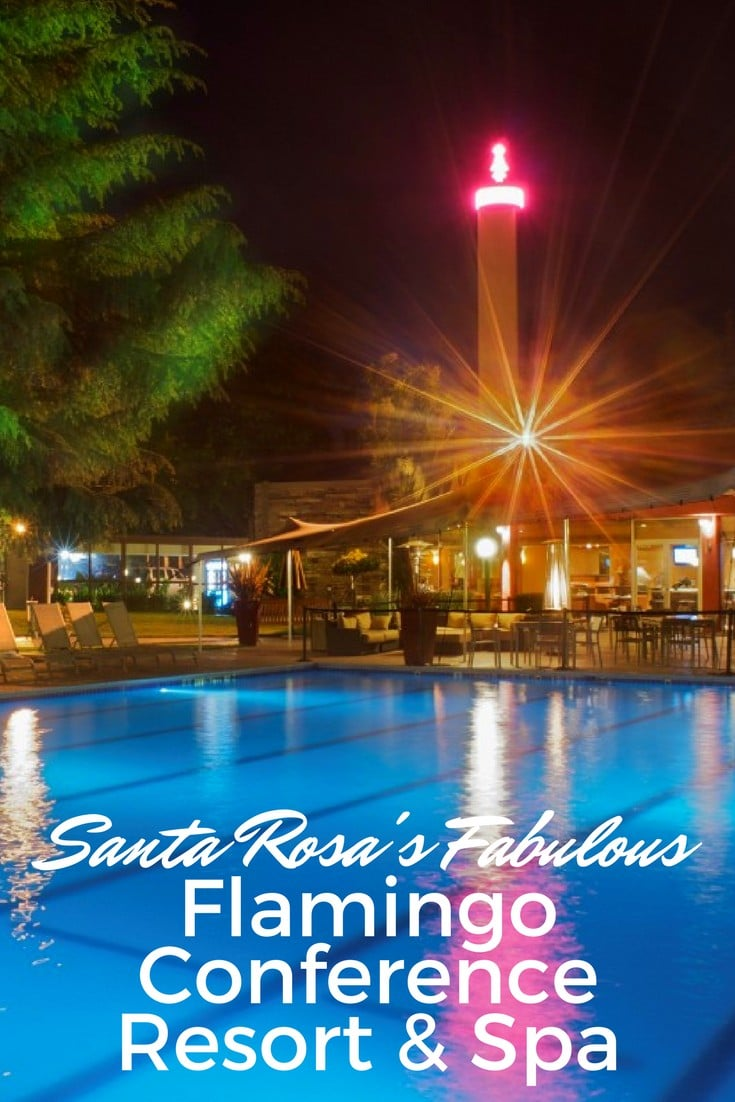 Wander the the fabulous & historic Flamingo Hotel which wraps around its amazing huge, glamorous swimming pool, now the Flamingo Conference Resort and Spa. #travel #santarosa #flamingohotel #sponsored