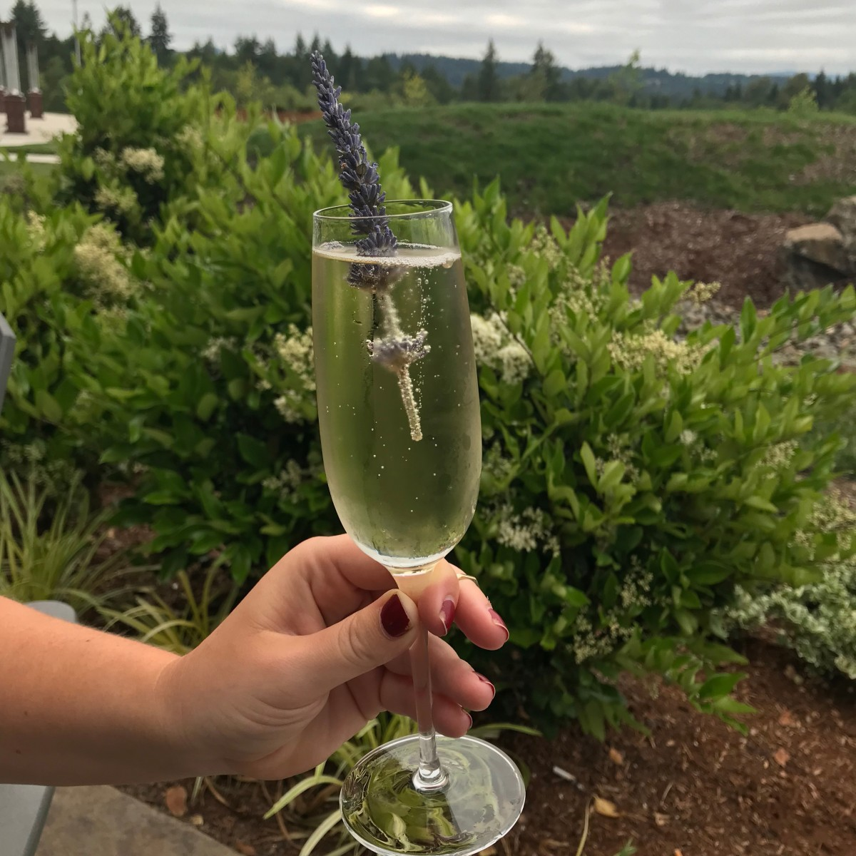 Summer Dining Near Portland and Vancouver
