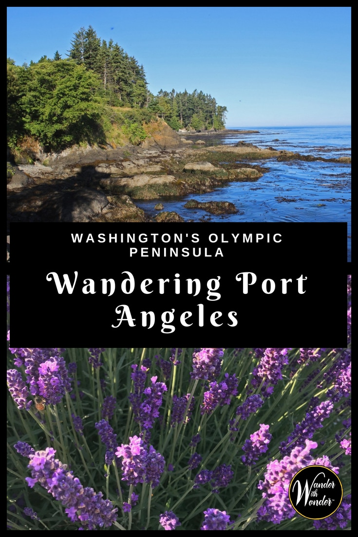 Port Angeles is a great base for exploring the beauty of Washington\'s Olympic Peninsula. But on a recent trip, I discovered that the area in and around Port Angeles is definitely worth wandering. #PortAngeles #OlympicPeninsula #Olympic #Washington #Outdoors #Hiking #coastal #PNX