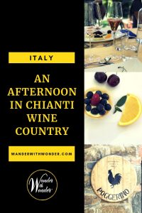 Fattoria Poggerino is a boutique winery and heritage B&B located deep in the heart of Tuscany's Chianti wine district. Known for producing some of the region's best Chianti Classico, the winery is open seasonally for wine tours.