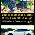 The Walla Walla Valley Wine Alliance brings together some of their best winemakers to create custom itineraries to help visitors wander Walla Walla, Washington. I knew it was perfect for this wine-loving wanderer. I discovered some amazing Walla Walla Valley wines and incredible winemakers—plus some great things to do—on my visit. Follow along as I suggest some great moments from some of this year's custom itineraries. #winetasting #Washington #PNW #WallaWalla #WWander #WallaWallaWine #ad