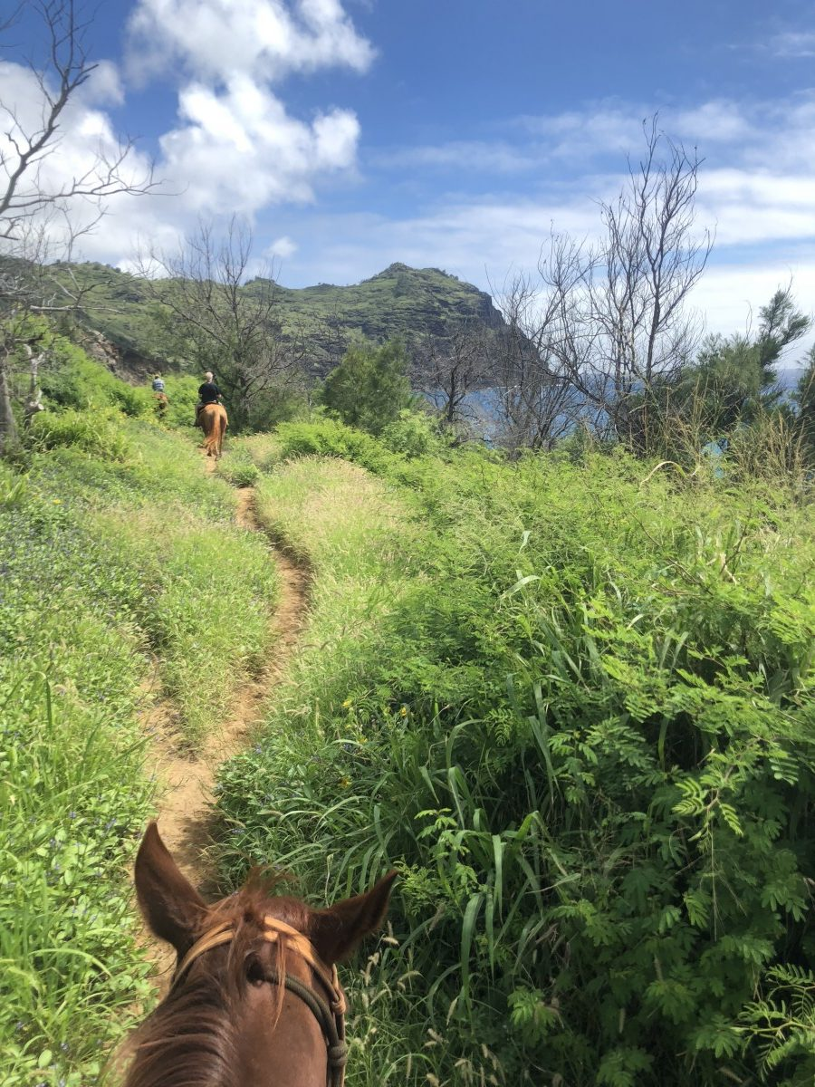 Head out with CJM Country Stables to ride on the South Shore during your ultimate BFF getaway on Kauai. Photo by Jill Schildhouse