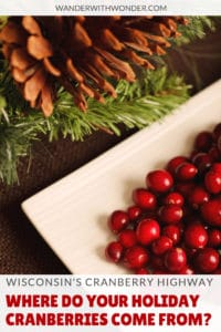 How much do you know about the cranberries on your holiday table? Believe it or not, those cranberries probably came from Wisconsin. Here's how you can experience cranberry country in Wisconsin. #Wisconsin #holidays #cranberries #WisconsinCranberryRoad #holidayfood