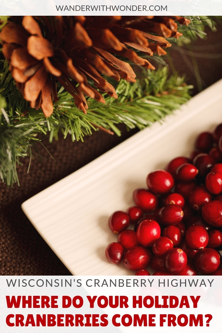 How much do you know about the cranberries on your holiday table? Believe it or not, those cranberries probably came from Wisconsin. Here\'s how you can experience cranberry country in Wisconsin. #Wisconsin #holidays #cranberries #WisconsinCranberryRoad #holidayfood