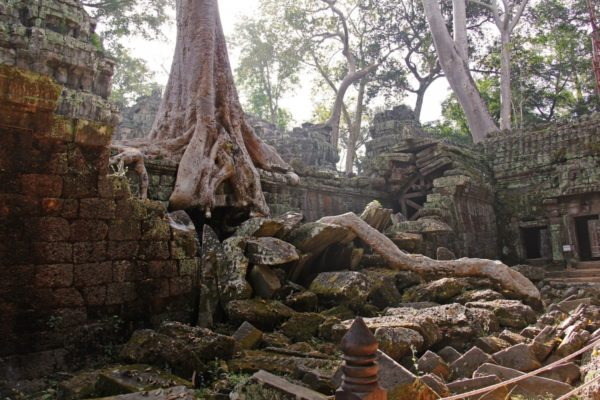 Visit ancient temples of Siem Reap during your next trip in East Asia. Photo courtesy Creative Commons